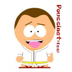 Cours Judo Poussinet