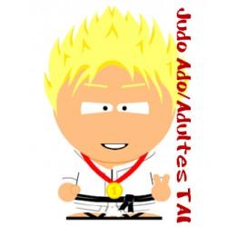 Cours Judo Ado/Adultes TAI