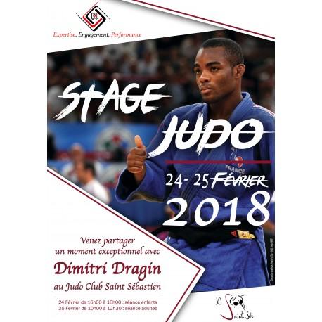 Stage Judo enfants (6-12 ans)