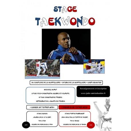 Stage Taekwondo enfants (6-12 ans)